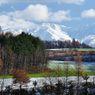 NIKON NIKON D90で撮影した風景(美瑛の雪化粧)の写真(画像)