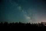 星空を見上げる木立