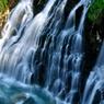 NIKON NIKON D90で撮影した風景(美瑛 白ひげの滝)の写真(画像)