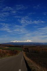 旭岳へと続く道