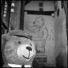 クマさんのお店