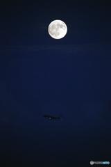 月とスターフライヤー
