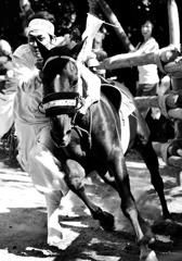 駆け馬 #3