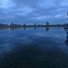 荒川 曇りの朝