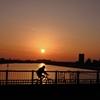 荒川 自転車シルエット