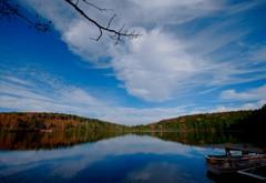 落葉(カラー) 白駒池
