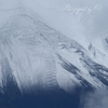 新雪の登山道