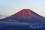 眠る赤富士