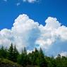PANASONIC DMC-GH1で撮影した(富士の夏)の写真(画像)