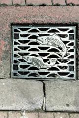 歩道を泳ぐ鮭Ⅱ