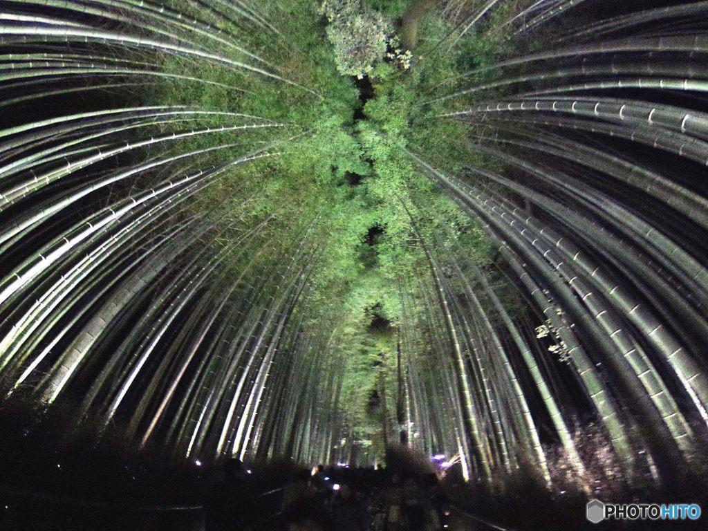 2015年12月 嵐山・花灯路