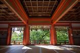 神廟拝所の緑