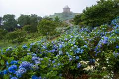 紫陽花の天文台