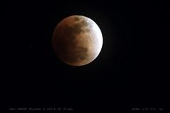 Blood Moon .