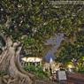 CANON Canon EOS 5D Mark IIで撮影した(El Pueblo DE Los Angeles☆)の写真(画像)