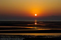 Zebra sunrise☆