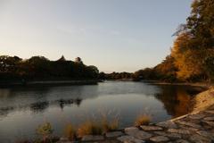 晩秋の水辺 4