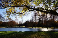 師走の湖畔 2