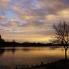 冬の水元公園 1