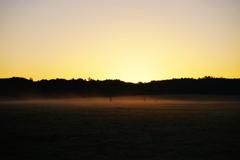 草原の朝 8