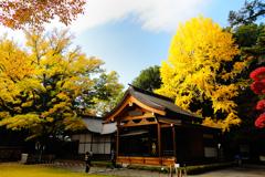 武田神社ひのき舞台
