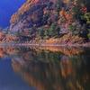精進湖は富士山抜きでも十分美しい