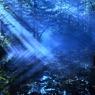 神秘の湖・・・光乱舞