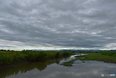 渡良瀬遊水地水路