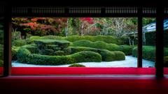 大池寺 蓬莱庭園より。