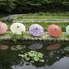 庭園と和傘