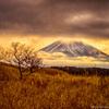 荒野の富士