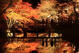 岩屋堂公園 2012