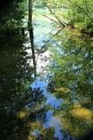 鏡の森 -2-