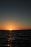 昼と夜の渚へ