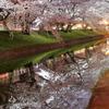 春夜の映し鏡