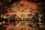 曽木公園 2016