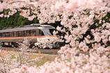 春の飛騨路