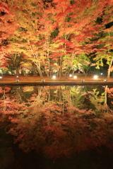 曽木公園2017