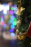 「クリスマスの名残」
