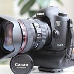 CANON Canon EOS 60Dで撮影した(我が家にフルサイズがやってきた!!)の写真(画像)