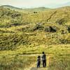 草原の親子 Ⅱ