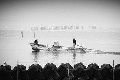 松江百景 朝靄の出漁 宍道湖