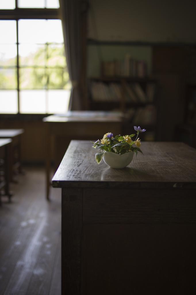 教壇の花。