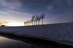 水路と稲架木