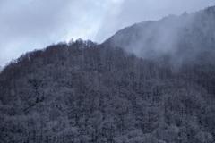 今頃の雪景色