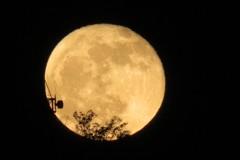 あがる月⑥