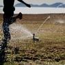 SONY DSLR-A900で撮影した風景(Sprinkler dance☆)の写真(画像)