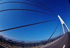 青い空に。