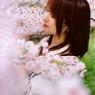 桜の園にて(1)