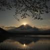 田貫湖の春ダイヤ